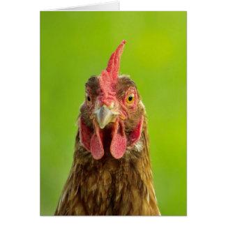 Portrait drôle de poulet sur le vert - carte de