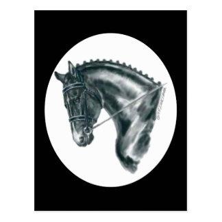 Portrait noir de cheval de dressage carte postale