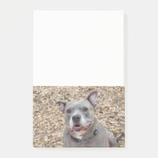 Post-it® Dites les notes de sourire de Pitbull de FROMAGE
