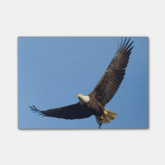 Post-it® Eagle grand