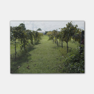 Post-it® Établissement vinicole
