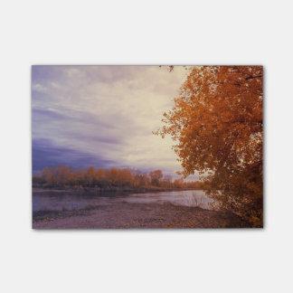 Post-it® Paysage d'automne