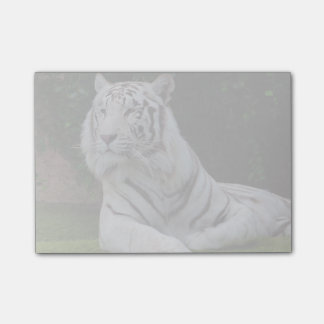 Post-it® Tigre de Bengale blanc