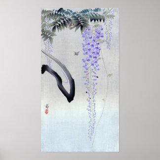 Poster 藤の花, glycine fleurissante de 古邨, Ohara Koson,