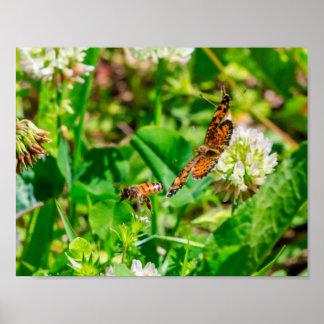 Poster Abeille et papillon