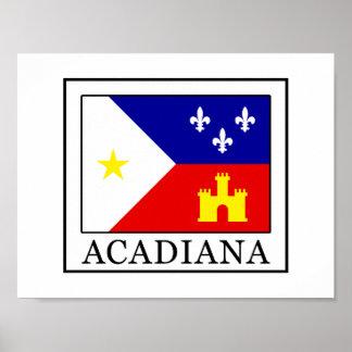 Poster Acadiana