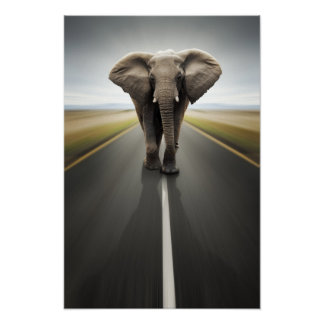 Poster Affiche de camionneur d'éléphant