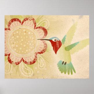 Poster Affiche de colibri