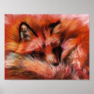 Poster Affiche de Fox de refuge