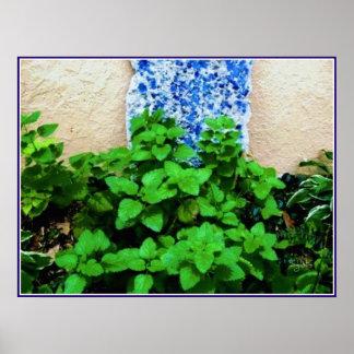 Poster Affiche de jardin de herbes aromatiques de baume