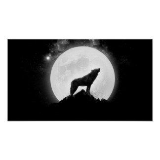 Poster affiche de loup