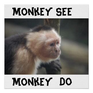 Poster Affiche de singe