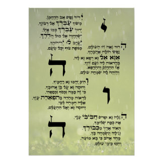 Poster Affiche de Yedid Nefesh