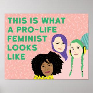 Poster Affiche féministe contre l'avortement et