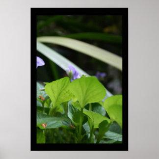 Poster Affiche florale violette abstraite de photographie