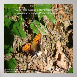 Poster Affiche graphique de papillon/nature avec Ralph Wa