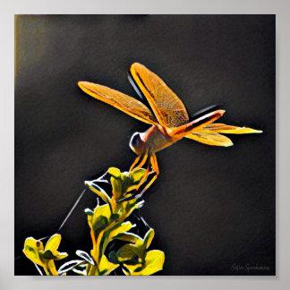 Poster Affiche mate archivistique de la libellule 7x7 de