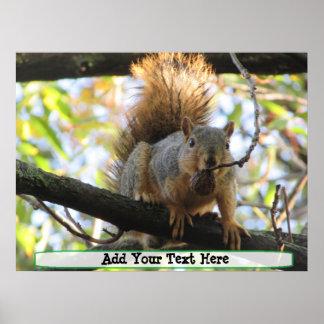 Poster Affiche mignonne personnalisée d'humour d'écureuil