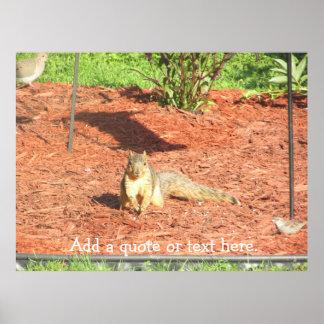 Poster Affiche personnalisée par écureuil drôle