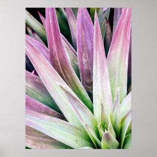Poster Affiche verte et pourpre de yucca