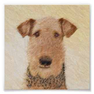 Poster Airedale Terrier