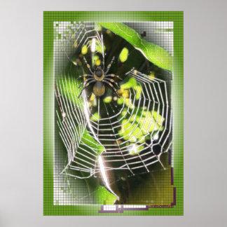 Poster Araignée