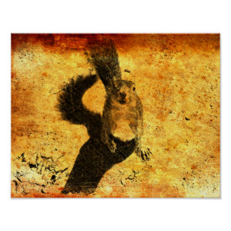 Poster Art animal - écureuil