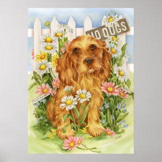 Poster Aucuns chiens !