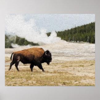 Poster Bison avec vieux fidèle dans Yellowstone