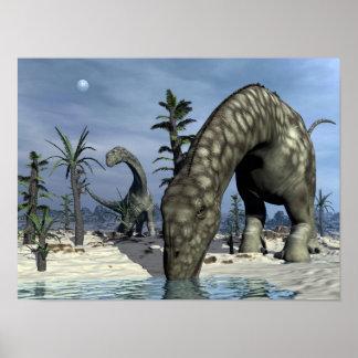 Poster Boire de dinosaure d'Argentinosaurus