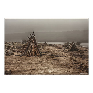 Poster Bois de flottage sur une copie brumeuse de plage