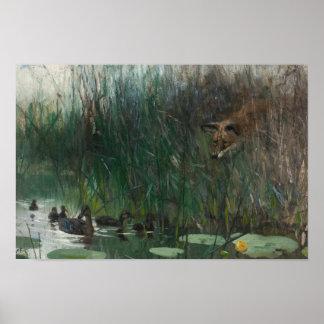 Poster Bruno Liljefors - troupeau des canards et du Fox
