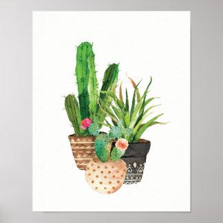 Poster Cactus d'aquarelle et groupe succulent