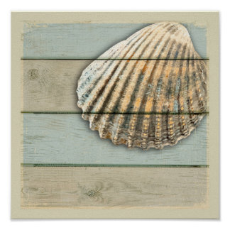 Poster Cardita Shell
