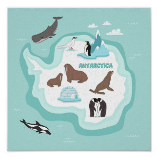 Poster Carte animale d'enfants de l'Antarctique