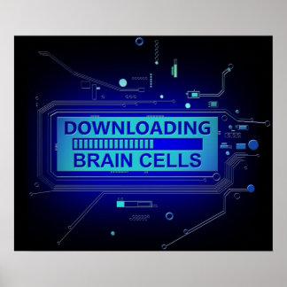 Poster Cellules de cerveau de téléchargement