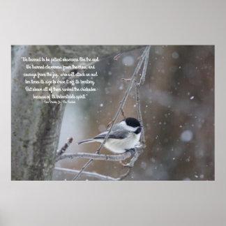 Poster Chickadee couvert par noir dans la neige - texte