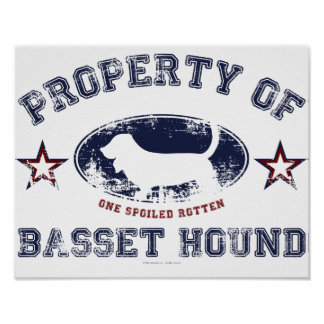 Poster Chien de basset-hound