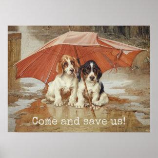 Poster Chiots de chien de basset sous le parapluie CC0867
