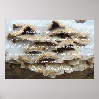 Poster Citation d'Emerson au sujet d'affiche naturelle de