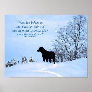 Poster Citation noire de Labrador - ce qui se trouve en