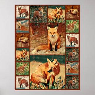 Poster Collage de Fox rouge