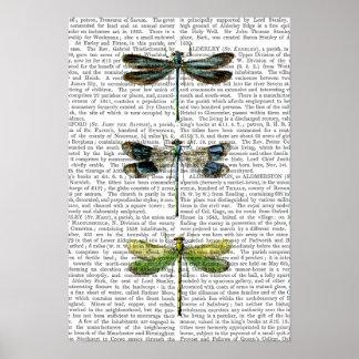 Poster Copie 3 de libellules