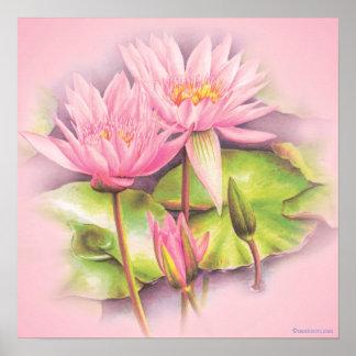 Poster Copie botanique d'affiche de beaux-arts roses de