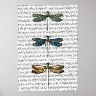Poster Copie de libellules