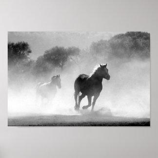 Poster Copie galopante de cheval sauvage