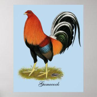 Poster Coq blond comme les blés de coq de combat