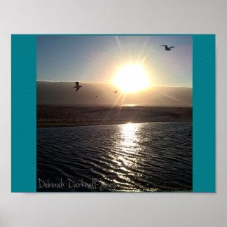 Poster Coucher du soleil de plage de crique de Scott