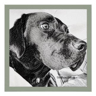 Poster Croquis noir de labrador retriever