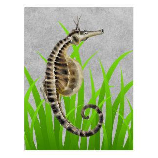 Poster de animal gonflé par pot d'hippocampe carte postale